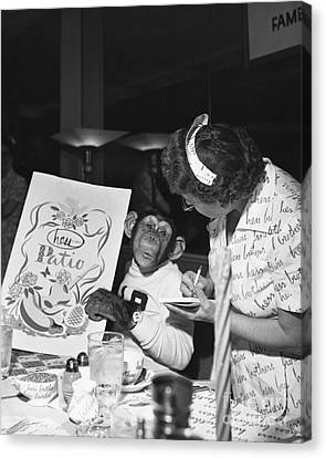 Zippy The Chimp Canvas Print by Dick Hanley
