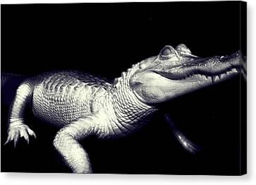 Zombie Gator Canvas Print by Jeremy Martinson