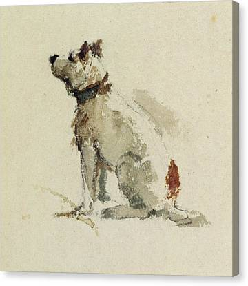 A Terrier - Sitting Facing Left Canvas Print by Peter de Wint