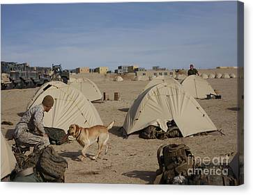 A Dog Handler And His Military Working Canvas Print by Stocktrek Images