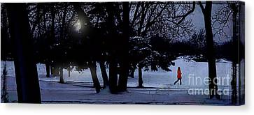 A Walk In The Snow Canvas Print by Jim Wright