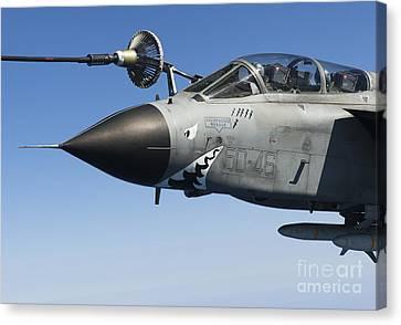 An Italian Air Force Tornado Ids Canvas Print by Gert Kromhout