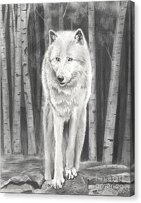 Arctic Wolf Canvas Print by Christian Conner