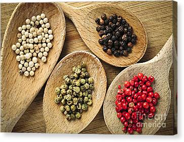Assorted Peppercorns Canvas Print by Elena Elisseeva