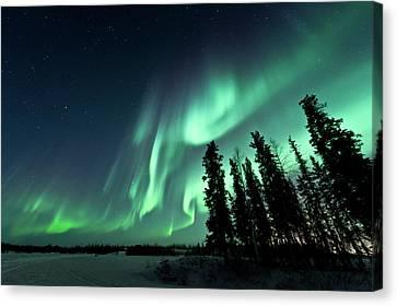Aurora Borealis Canvas Print by Michael Ericsson