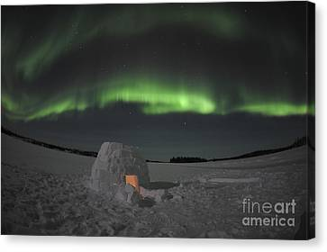 Aurora Borealis Over An Igloo On Walsh Canvas Print by Jiri Hermann