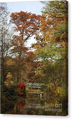 Autumn Forest Canvas Print by Angela Doelling AD DESIGN Photo and PhotoArt