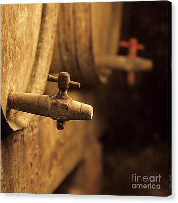 Barrels Of Wine In A Wine Cellar. France Canvas Print by Bernard Jaubert