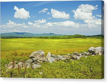 Blue Sky And Clouds Over Maine Blueberry Field Canvas Print by Keith Webber Jr