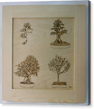 Bonsai Pyrographic Art Original Panel With Frame By Pigatopia Canvas Print by Shannon Ivins