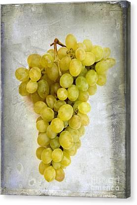 Bunch Of Grapes Canvas Print by Bernard Jaubert