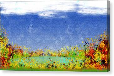 Contemplations Canvas Print by Christopher Gaston