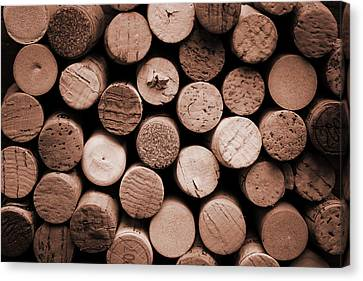 Cork Wine Canvas Print by Isabel Poulin