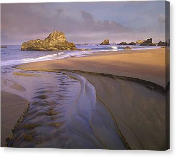 Creek Flowing Into Ocean At Harris Canvas Print by Tim Fitzharris