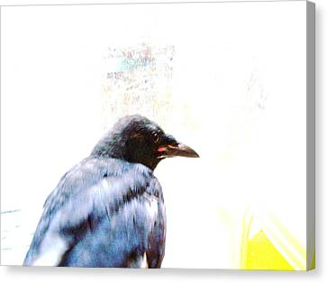 Crow Portrait Canvas Print by YoMamaBird Rhonda