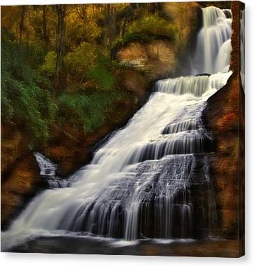 Dingmans Falls Canvas Print by Susan Candelario