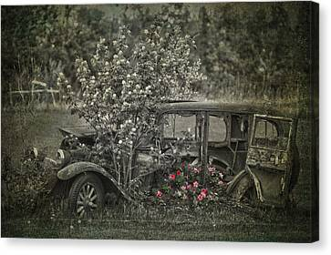 Driven To Find Love  Canvas Print by Jerry Cordeiro