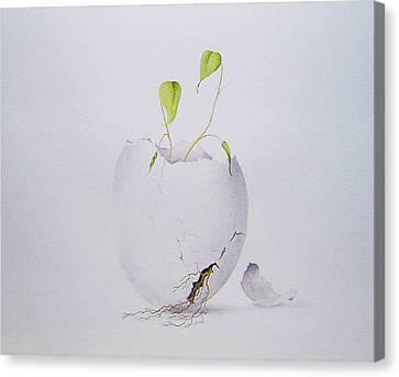 Egg Plant Canvas Print by Carol McLagan