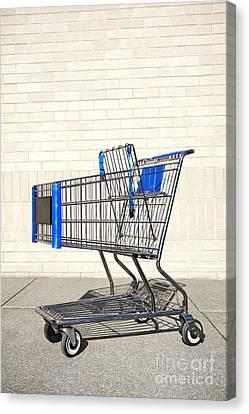 Empty Shopping Cart Canvas Print by Paul Edmondson