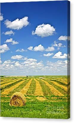 Farm Field At Harvest In Saskatchewan Canvas Print by Elena Elisseeva