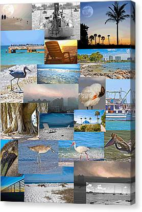 Florida Collage Canvas Print by Betsy Knapp