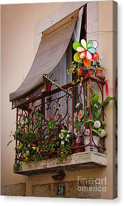 Flowery Balcony Canvas Print by Carlos Caetano