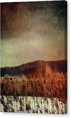 Frosty Field In Late Winter Afternoon Canvas Print by Sandra Cunningham