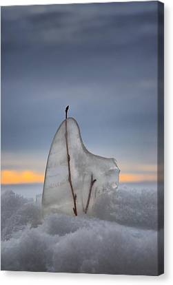 Frozen In Time Canvas Print by Heather  Rivet
