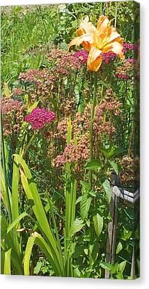 Garden Flowers  Canvas Print by Thelma Harcum