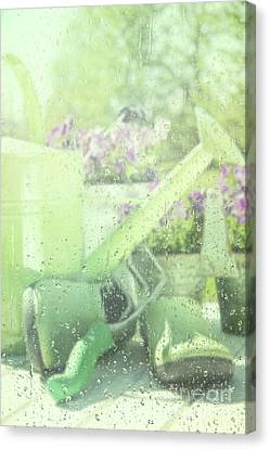 Garden Tools For Spring Planting  Canvas Print by Sandra Cunningham