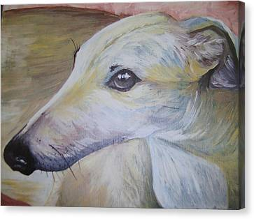 Greyhound Canvas Print by Leslie Manley