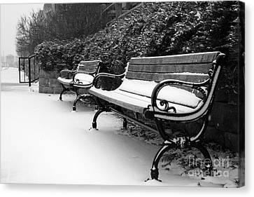 Have A Seat Canvas Print by Joel Witmeyer