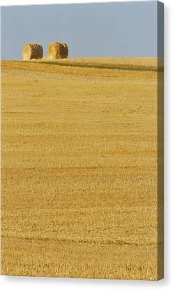 Hay Bales, Holland, Manitoba Canvas Print by Mike Grandmailson