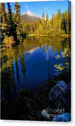 Jasper - Miette River Canvas Print by Terry Elniski