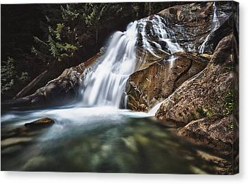 Lower Cascades Of Malachite Creek Canvas Print by A A