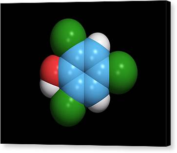 Molecule Of A Component Of Tcp Antiseptic Canvas Print by Dr Tim Evans