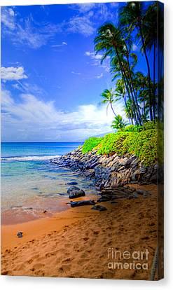 Napili Bay Maui Canvas Print by Kelly Wade