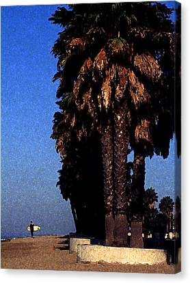 Palm Trees At Surfers Point Canvas Print by Ron Regalado
