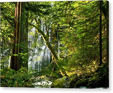 Panther Creek Canvas Print by Jean Noren