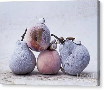 Pears And Apples Canvas Print by Bernard Jaubert