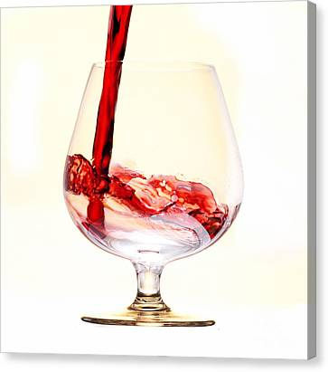Red Wine Canvas Print by Michal Boubin