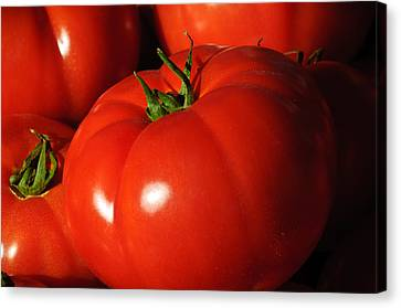 Ripe Tomatoes Canvas Print by Connie Cooper-Edwards