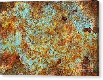 Rust Colors Canvas Print by Carlos Caetano