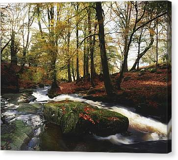 Sally Gap, County Wicklow, Ireland Canvas Print by The Irish Image Collection