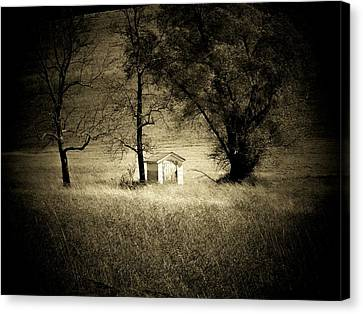Shed And Trees Canvas Print by Michael L Kimble