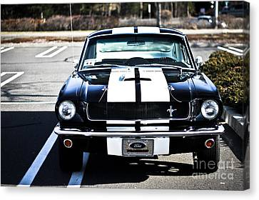 Shelby Gt350 Canvas Print by Andrew  Cragin