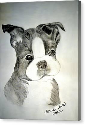 Simply Irresistable Canvas Print by Maria Urso