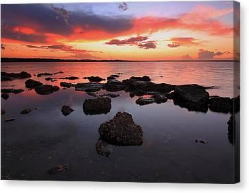 Swan Bay Sunset Canvas Print by Paul Svensen