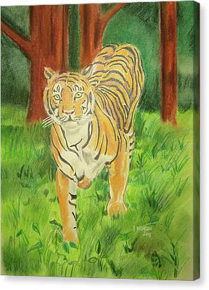 Tiger On The Prowl Canvas Print by John Keaton