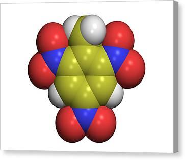 Tnt Molecule Canvas Print by Dr Tim Evans